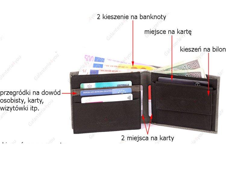 4c5d008680282 Skórzany portfel męski Sergio Tacchini szary K50TGDP029 GRI ...